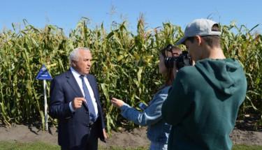 На Київщині представили новітні гібриди кукурудзи: майже 100 сортів з підвищеною продуктивністю