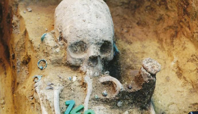 Деформированные черепа на древнем кладбище показали развитие мультикультурных сообществ
